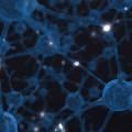 Neuroplasticitate - Neuroplasticitate – Cum sa-mi Invat Creierul Noi Obiceiuri