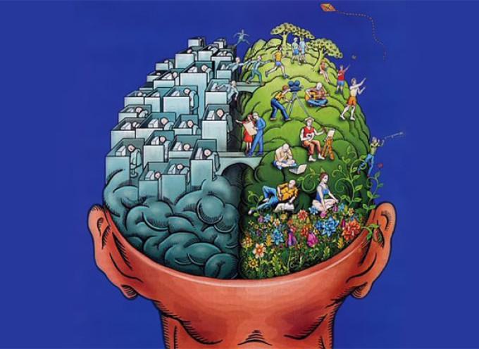 Creierul – Organ Minune sau Uzina de Prelucrare?