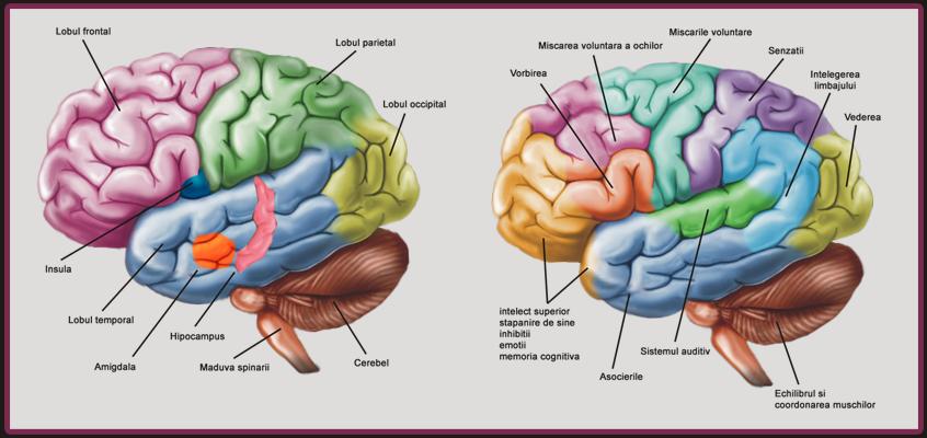 creier-NLP