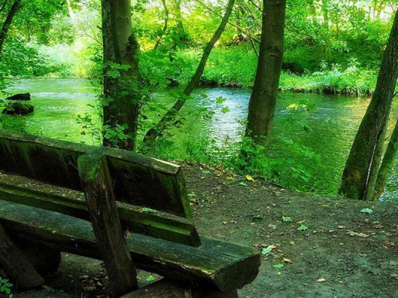 Natura cu frumusetile ei: sunete de relaxare, lucru si somn